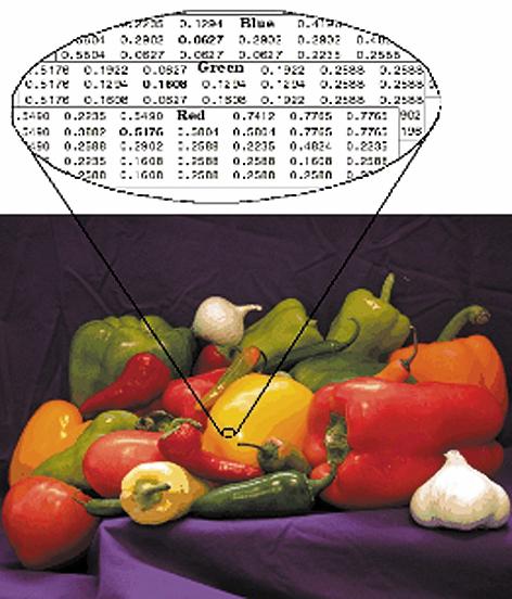 Рис. 4. Структура цветного: а) индексированного изображения; б) RGB-изображения