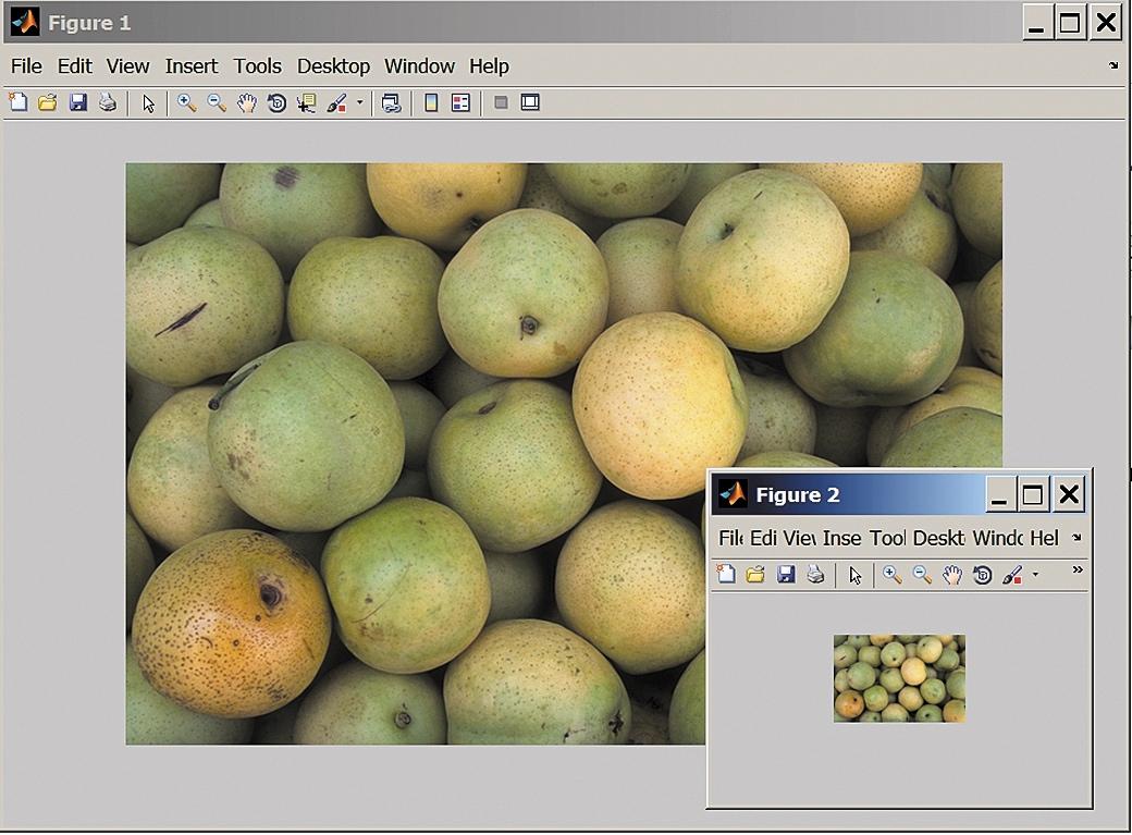 Изображения яблок разного размера
