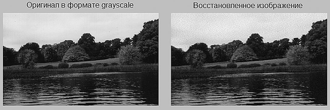 Оригинальное изображение в формате grayscale и после прямого и обратного косинусного преобразования