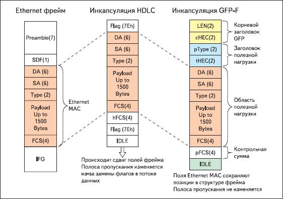 Сравнение инкапсуляций фреймов HDLC и GFP-F