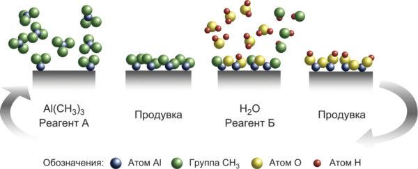 Схема роста тонкопленочного покрытия в ALD-процессе