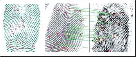 Распознавание отпечатка пальца по выделенным деталям