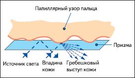 Принцип работы FTIR-сканеров