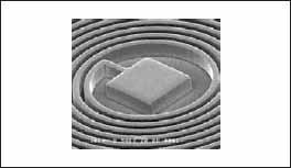 Фрагмент микрокатушки под электронным микроскопом