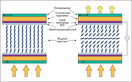 Базовые принципы работы VA-технологии в состоянии «выкл.» (слева) и «вкл.» (справа)