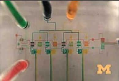 Микрожидкостные интегральные схемы, интегрированные с полупроводниковыми элементами, разработанные в Университете Мичигана