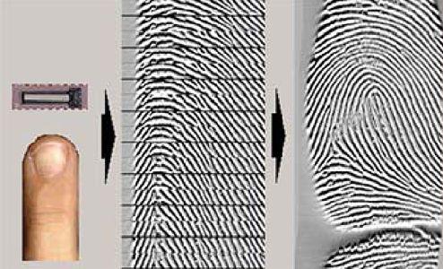 Рис. 1. Покадровое считывание картины отпечатка пальца и его реконструкция